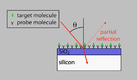 Si-Si02 chip with unlabeled pathogens